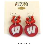 UW Earrings